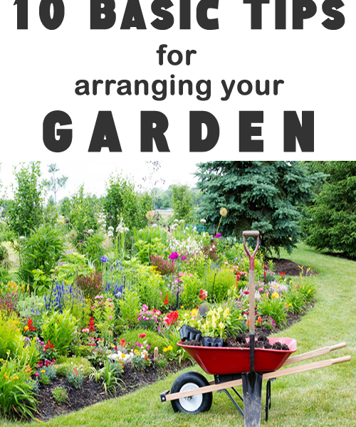 10 basic tips for arranging your garden