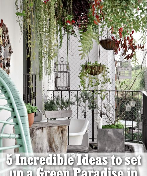 5 Incredible Ideas to set up a green paradise in your balcony